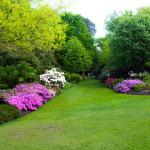 Dům, byt a zahrada