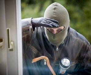Zlodějům se stále daří, braňte se efektivně. Třeba vhodnou pojistkou!