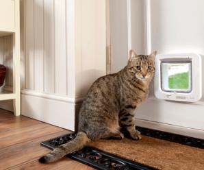 Umožněte svým zvířecím miláčkům bezpečný pohyb skrz zamčené dveře