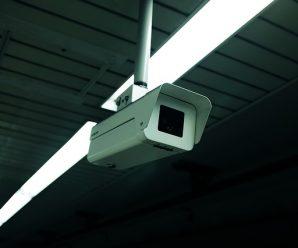 Ochrana majetku za pár korun? Vyměňte kamerový systém za fotopast